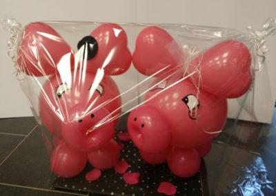 Glücksschweine (Latexballonfigur) | 34€