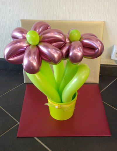BlumenVase 12€