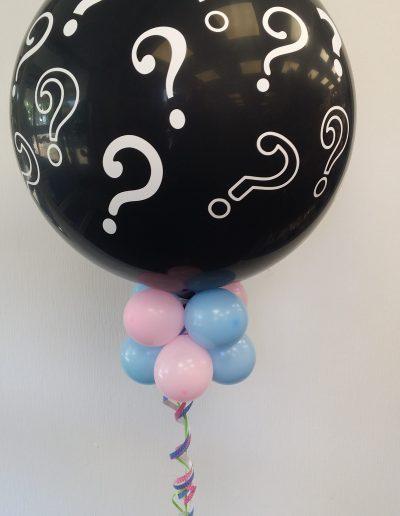 Exploder als He-or-She, 45€ mit Konfetti und  20 Ballons inside